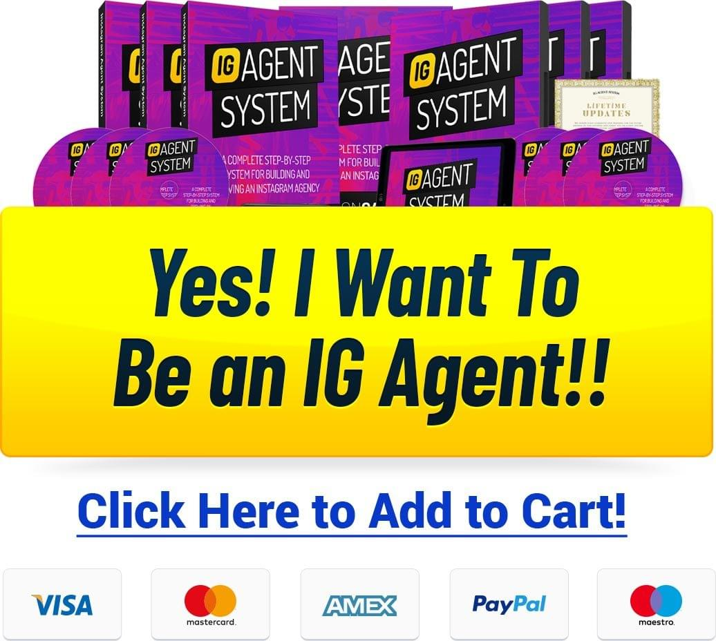 The IG Agent System